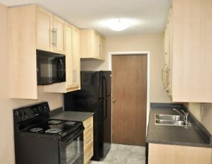 Fully Renovated 2 Bedroom Condo Suite for Rent in Lakeview