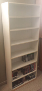 6ft Book Shelf