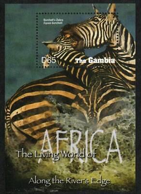 Gambia Stamp 2944  - Zebra