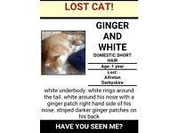 help bring jack home