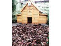 Chicken Coop with Automatic Door opener and Outdoor feeder