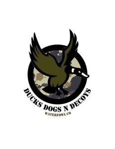 Guided hunt DUCKS DOGS N DECOYS