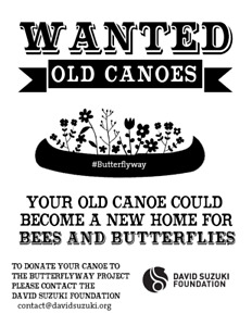 Old canoes wanted for David Suzuki Foundation project