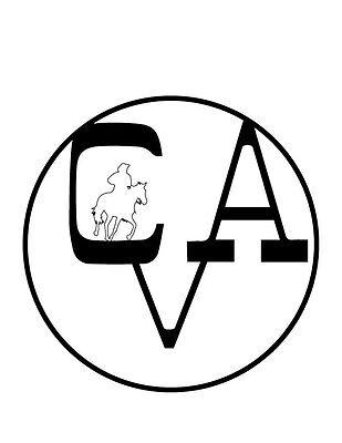 Centennial Valley Association