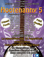 HOOTENANY 5 Live Music Fundraiser August 22 at Union Hall