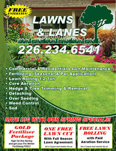 Lawn Care, Cutting, Spring Cleanup, Aeration, Rolling