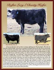 Rafter Lazy S Purebred Black Angus Production Sale