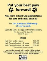 Cat & Rabbit Nail Trims