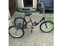 """Tri mantis 20"""" girls tricycle"""