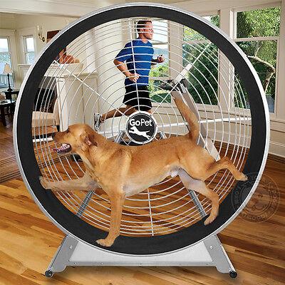 "GoPet TreadWheel Dog Treadmill MEDIUM LARGE Dogs 80 to 150 lbs 60"" diameter NEW"