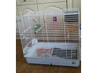 Budgie's parrot cage for sale in Middlesbrough