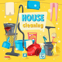 Do you need a house cleaner?