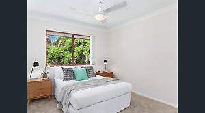Newly renovated 4 bedroom home to share Tewantin Noosa Area Preview