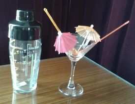 Shaken not stirred ... Cute cocktail shaker, glass, stirrers and umbrellas!