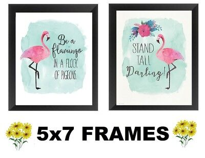 💗 5x7 Pink Flamingo Pictures Tropical Bird Decor Wall Hangings ()