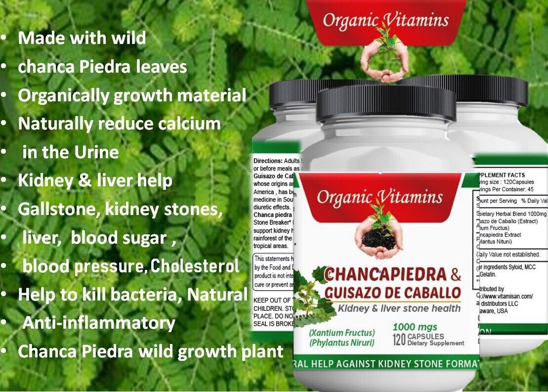 120 CAPS STONE BREAKER CHANCA PIEDRA Herbal Kidney liver Support chancapiedra 2