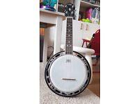 Ukulele banjo