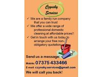 Professional domestic cleaning (Czynsky Services)