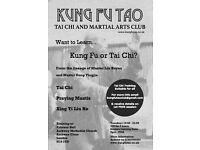 Tai chi, praying mantis, xing yi liu he classes and personal instruction