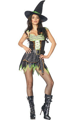 Spider Web Witch Womens Halloween Costume Dress sz M/L NEW Sexy Dress Belt & Hat (Spider Web Witch Costume)