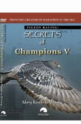 Many Roads To Victory Racing Pigeon Dvd 2 Disc