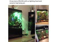 XL Reptile terrarium exo terra