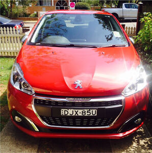 Little Red Car West Ryde Ryde Area Preview