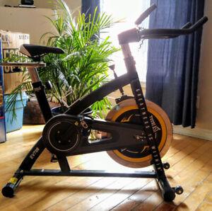 Vélo de spinning Everlast