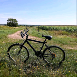 """26"""" Supercycle Bicycle with new tires and tubes"""