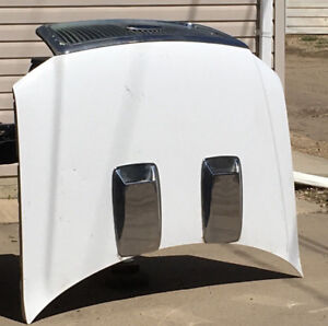 2004-08 F-150 Metal Hood wGrill and Twin Scoops, very light,