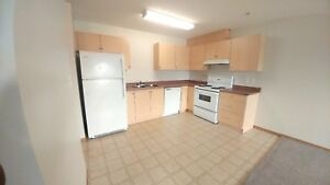 STOP WITH THE SMART CARD! Insuite Laundry, 2BR,  for 1005!
