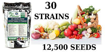 12,500 Seed 30 Vegetable/Fruit Variety Garden Pack Emergency Survival Kit Food ()