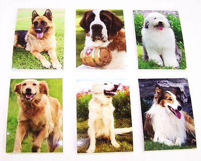 6 Stück verschiedene Hunde kleine Notizblöcke Block Blöcke Hund Dog Neu