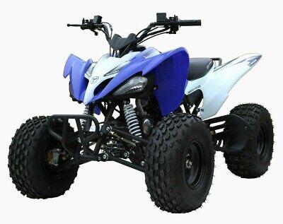 BENYCO PENTORA KINDERQUAD 125ccm 4-Takt Benzin QUAD POCKETBIKE MOTOCROSS ATV na sprzedaż  Wysyłka do Poland