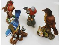 Porcelain Bird Ornaments - Robin, Blue Tit, Song Thrush and Chaffinch