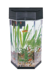 hexagonal fish tank ebay. Black Bedroom Furniture Sets. Home Design Ideas