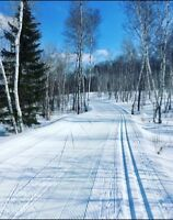 Skate Ski Lessons (Cross Country Skiing)
