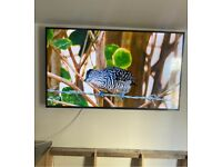 Make me an offer for Hisense 55 inch UHD 4K tv