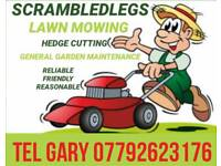 Lawn Mowing/Grass Cutting Hedges General tidy up