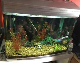 Aquarium Tank AR-620 (ViaAqua)