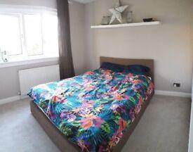 Room for rent - Clermiston