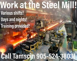 Days or Nights - Steel Mill: General Labourers Wanted!