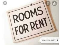 Double room for rent in Thetford
