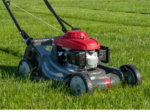 Lawn mower for hire ride on mowing whipper snipper mowing trailer Penrith Penrith Area Preview