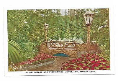 Vintage Missouri Chrome Postcard Louis Jewel Box Forest Park Bridge Poinsettias