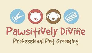 Pawsitively Divine Pet Grooming Hammond Park Cockburn Area Preview