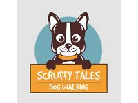 Scruffy Tales, Dog Walker and Pet Sitting Services, Inverness area