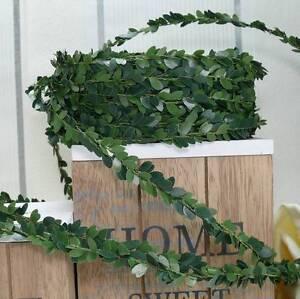 30m Buchsbaumgirlande (0,36 €/m) Girlande Buchsbaum Kommunion Hochzeit Grün