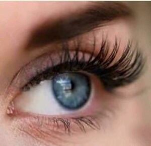 Eyelash Extensions ( Finishing Touch Beauty Studio) Windsor Hawkesbury Area Preview