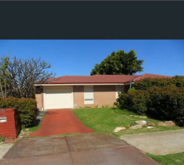 3x1 big yard, pet friendly, fully refurbished home cooloongup